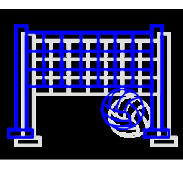 Волейбол/Бадминтон